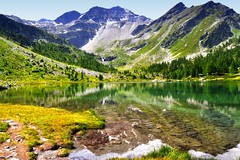 Lago d'Arpy (marco.falaschiii) Tags: lago montagna paesaggio acqua albero alberi erba lake laghi lakes landscape colors color cielo sky yellow green giallo verde valle daosta arpy groupe charlie