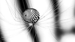 Spiral B&W (ΨᗩSᗰIᘉᗴ HᗴᘉS +27 000 000 thx) Tags: spiral spirale bw drop droplet hensyasmine namur belgium wallonie europa aaa بلجيكا belgique namuroise proxi belga info look photo bélgica ベルギー белгия բելգիա belgio 벨기에 belgia бельгия 比利时 bel be ngc saariysqualitypictures yasminehensinterst intersting interestingness eu fr greatphotographers lanamuroise 7dwf smile