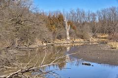 Wetland dryness