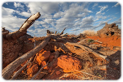 Dry (Craig Jewell Photography) Tags: bluemoon branch camp clouds cloudy dry iron karara mine mining outback parched red reddirt redearth sky westernaustralia f50 ef1635mmf28liiusm ¹⁄₂₅₀sec canoneos5dmarkii iso100 16 20180130185821mg0548cr2 noflash ‒1ev