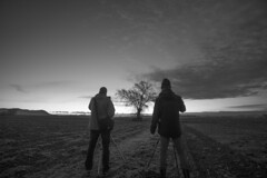 Dos hombres y un destino (ouyea...) Tags: robertredford paulnewman arbol arbre tree landscape paisatge fujifilm fuji fujifilmxpro fujinon fujifilmxt2 fujinon1855 baixempordà empordanet paisaje
