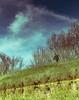 Reflet - Paint the sky (brunomalfondet) Tags: canalduvigueirat arles reflet homme paintthesky flickrfriday