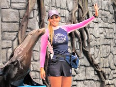 Marine Mammal Specialist (thomasgorman1) Tags: park show entertainment sealion seal mammal woman trainer outdoors mexico canon aquatic cozumel caribbean