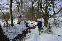 IMG_0217 (rudolf.brinkmoeller) Tags: eifel wandern natur eifelsteig