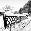 Tranche de traîneau... (woltarise) Tags: rosemont montréal botanique japonais jardin palissage neige hiver ricohgr