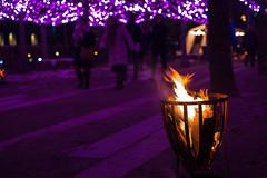 Flames (Infomastern) Tags: drömljus fs180211 helsingborg eld fire flame fotosondag lila ljuskälla purple camera:make=fujifilm camera:model=xt2 geocity geostate geocountry exif:isospeed=800 exif:model=xt2 geolocation exif:make=fujifilm exif:focallength=35mm exif:aperture=ƒ22 exif:lens=xf35mmf14r