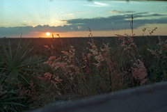 Day is Done (PositiveAboutNegatives) Tags: nikon nikkor rangefinder s2 50mmnikkorf2 50mm film analog colornegative agfa vista200 hobemountain johnathandickinson florida lastlight sunset twilight coolscan settingsun