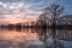 still waters run deep... (Rafael Zenon Wagner) Tags: sundown sonnenuntergang 28mm wasser water spiegelung reflection baum tree wolken clouds