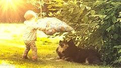 Happiness is... (evakongshavn) Tags: smileonsaturday happinessis sos hsos happiness children child kid kidsplaying dog bonding garden outside outsidepictures new light summer sunshine letthesunshinein letitbelight green havingfun haveaniceday carpediem enjoyingthemoment enjoy smallthings 7dwf