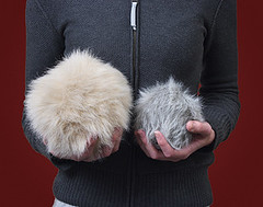 Star Trek Interactive Plush Tribbles (mywowstuff) Tags: gifts gadgets cool family friends funny shopping men women kids home