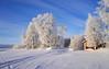 Winter day (harald.bohn) Tags: vinter winter dag vinterdag day snow snø frost rim rimfrost lake aursunden innsjø ice covered