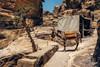 Donkey parking. (Matthias Dengler || www.snapshopped.com) Tags: donkey parking desert wadi musa petra jordan matthias dengler travel explore discover create sand daylight hot documentary landscape nature snapshopped sands