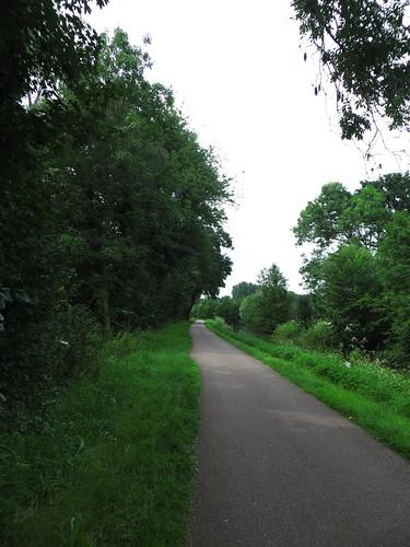 20140806 04 311 Jakobus Kanal Weg Bäume
