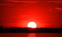 sunset (bilal güldoğan) Tags: sky skyline sony sunset sea sarı sahil su serene seaside sun stone gökyüzü günbatımı güneş istanbul images iskele türkiye thenature turkey hayat nikon nikonp600 nature nikoncoolpixp600 night gece birds bird kuş küçükçekmece darıca