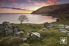 Murlough Bay (W.G. Photography) Tags: murloughbay countyantrim northernireland clouds colours rocks tree skyline sky discover northern ireland travel glens antrim