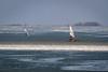 Ice Sailing - Gouwzee, The Netherlands (Dutchflavour) Tags: gouwmeer icesailing ice frozen monnickendam marken ijszeilen lake winter wintersport netherlands nederland holland gouwzee