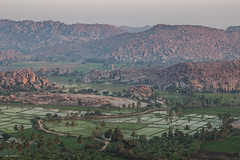 hampi landscape (sami kuosmanen) Tags: india intia taivas trees travel asia luonto light landscape hampi valo värikäs vuori maisema mountain rock boulder kivi sunrise nature geology field pelto rice palm palmu road tie