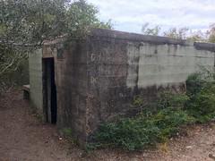 Bunker along Trail
