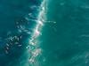 Waimea Bay Oahu Hawaii Surfers DJI Spark (Anthony Quintano) Tags: waimeabay oahu hawaii aerialphotography djispark hawaiianislands travelphotography dji surfing surfers