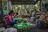 Vietnam (Alexis Rangaux) Tags: vietnam travel travellers nature people