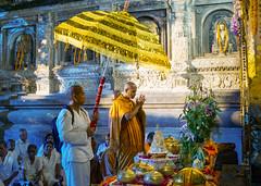 Mahabodhi Temple...India (geolis06) Tags: geolis06 asia asie inde india bihar bodhgaya mahabodhitemple mahabodhi temple bouddhisme boudha buddha unescoworldheritage unesco patrimoinemondialunesco inde2017 pilgrim pélerin moine monk prière prayer devotion dévotion bodhi bodhitree olympuscamera nun buddhism buddhist