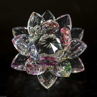 Crystal Lotus Blossum