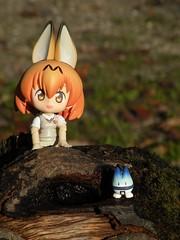 DSCN1196 (SethDanbo) Tags: cupoche nendo nendoroid orangehair redhair orange uniform fox ears nekomimi kitsune tiny little japan actionfigure