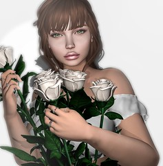 Heavenly Love (Aleriah.) Tags: genesis lab truth hair white roses erratic love heavenly purity new beginnings astralia mystery release valentines day kustom 9