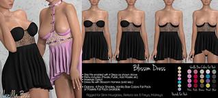 VB ~ Blossom Dress