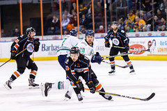 "Kansas City Mavericks vs. Florida Everblades, February 18, 2018, Silverstein Eye Centers Arena, Independence, Missouri.  Photo: © John Howe / Howe Creative Photography, all rights reserved 2018 • <a style=""font-size:0.8em;"" href=""http://www.flickr.com/photos/134016632@N02/40387899841/"" target=""_blank"">View on Flickr</a>"