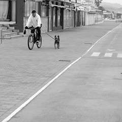 Deporte compartido (mike828 - Miguel Duran) Tags: canpicafortcanpicafort sony rx100 mk4 m4 iv mallorca deporte sport calle street bicicleta bicycle bike perro dog animal