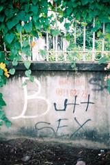 Butt SEX (jovenjames) Tags: 2017 135 35mm film yashica electro 35 gx agfa vista 400 vietnam