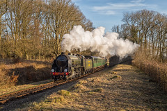 Winter afternoon steam (Nimbus20) Tags: bluebell railway southerm south england sussex sunshine steam trees grass neat train loco bulleid