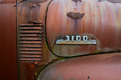 3100 (Todd Evans) Tags: nikon d7100 car auto automobile truck rust rusty simpsonsfarm georgia ga