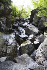 Stream between Rocks (Stefano Guerrini Rocco_) Tags: italy italia montagna mountain lago lake colors colori natura pontedilegno nikon aviolo acqua water sky rocks stream rocce ruscello