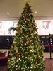 Christmas tree at the reception (seikinsou) Tags: ireland dublin winter christmas decoration clayton hotel airport tree reception