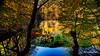 there is still spring in my country/ 250118015 (devadipmen) Tags: autumn bolu forest landscape landscapephotographer nationalpark naturepark naturephotographer orman sevenlakes sonbahar türkiye waterfall yedigöller şelale istanbul