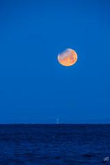 Super Blue Blood Moon (jgaosb) Tags: super blue blood moon jaygao interesting famous best most beautiful romantic cute cold ocean sea
