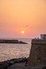 Sunset (NoahMP1) Tags: gallipoli sunset sunshine sun summer summer2017 summerdays italia italy apuliaregion apulia puglia pugliaregion regionpuglia seagull ocean sea mediterranean mediterraneansea water waters reflections reflection largesun sunlight yellowsun yellow yellowcolor orange people peoples peoplerelaxing canon canoneos canoneos700d colorful colors contrast color colours colour colourful warm warmcolors pier sky yellowsky eos eos700d eon700d beautiful