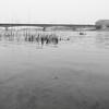 Vistula (Darek Drapala) Tags: view vistula bokeh warsaw warszawa water waterscape reflection reflects river riverside panasonic poland polska panasonicg5 bw blackwhite blackandwhite nature lumix light