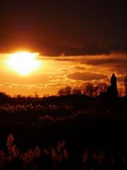 Sunset sunday 25-2-2018 Hichtum, Fryslân (CloudBuster) Tags: natue zonsondergang sunset platteland friesland fryslân nederland the netherlands orange oranje black zwart wolken clouds sun zon zonneschijn sunshine winter afternoon middag hichtum village natuurverschijnsel
