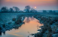 Empel - Kanaalpark 3326 (Ingeborg Ruyken) Tags: dropbox zonsopkomst februari sunrise winter morgen february rosmalenseaa flickr kanaalpark morning empel river empelsedijk natuurfotografie rivier 500pxs ochtend dawn