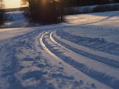 Ski route (Vesa Thynell) Tags: winter snow sunset nature field lumi talvi dusk hämärä auringonlasku olympus zuiko 45mm omd ski hiihto latu