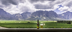 Beer with a view, Slanghoek, South Africa (David Lea Kenney) Tags: beer beerwithaview slanghoek landscape vineyard winery mountains explore travel clouds a6000 southafrica africa beauty green
