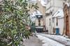 20180208-La neige à Paris©Jean-Marie Rayapen-0018 (lindsays-photography) Tags: paris neige neigeàparis snowinparis snow parisnotredame laseine snow2018paris neigeàparis2018 bonhommedeneige