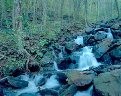 Many Mini Falls (Mark Sinderson) Tags: 4x5 amicalolafalls amicalolafallsstatepark camerabodies chamonix045f1 fall film ga georgia kodakektar100 largeformat4x5 lenses locations nikkorw135mmf56 northamerica seasons states us usa unitedstates waterfall waterscape