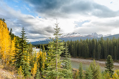 DSC_0833.jpg (Christa Claus) Tags: camper canadianrockies roundtrip banff river canada 2016 alberta holiday mountain