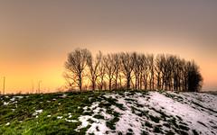 Last light. (Alex-de-Haas) Tags: 1635mm d750 dutch hdr holland nederland nederlands netherlands nikkor nikkor1635mm nikon nikond750 noordholland thenetherlands westfriesland belichting bomen boom cloudless daglicht daylight handheld hemel highdynamicrange landscape landscapephotography landschap landschapsfotografie licht light lighting lucht onbewolkt skies sky sneeuw snow sundown sunset tree trees unclouded winter zonsondergang