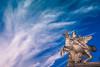 Paris_Place_de_la_Concorde_20161023_0004 (ivan.sgualdini) Tags: canon city concorde france francia parigi paris place îledefrance fr