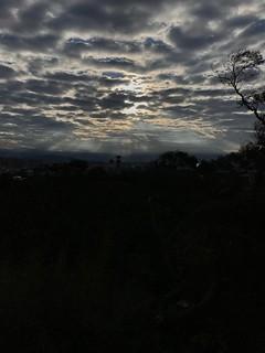 Waiting sunrise